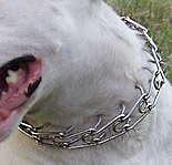 prong collar
