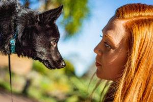woman gazing at dog