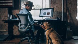 Man at computer with dog